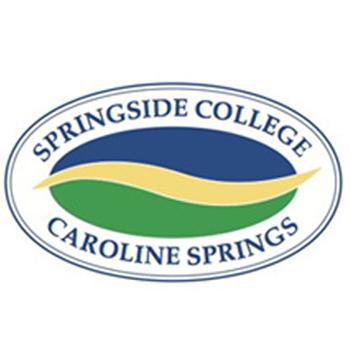 Springside College